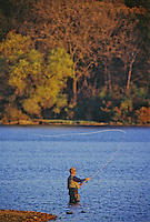 A fly fisherman practices his art on Maple Lake, Maple Lake Forest Preserve, Cook County, Illinois