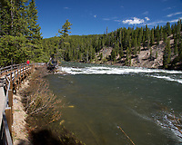 Boardwalk Trail Along LeHardys Rapids, Yellowstone National Park