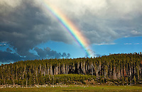 A rainbow seen from Firehole Lake Drive in the Lower Geyser Basin of Yellowstone National Park.