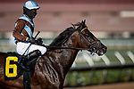 07-24-20 Stakes and Scene Del Mar