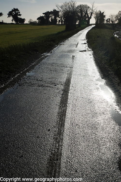 Shining silvery surface of wet tarmac on a country road in winter, Ramsholt, Suffolk, England