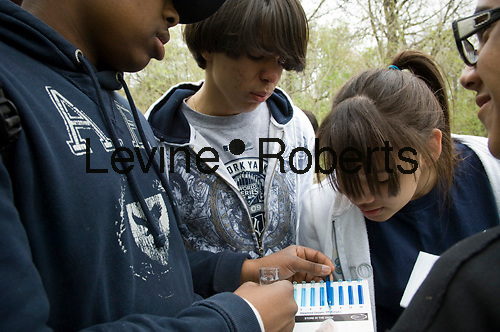Bronx middle school students volunteer their time in Bronx Park in New York on Tuesday, April 13, 2010.  The students  test the water quality of the Bronx River   by measuring the dissolved oxygen in the water.  (© Frances M. Roberts)