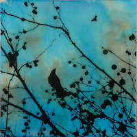 Bird in branches with berries encaustic painting with photography. SOLD