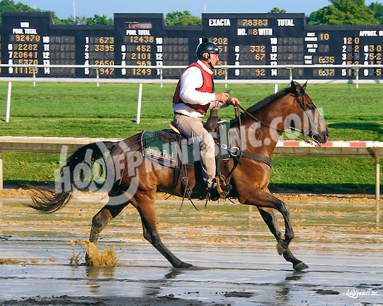 Lance before The Delaware Oaks (gr 3) at Delaware Park on 7/9/16