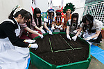 Akihabara maids sow seeds on a rooftop garden at the Japan Agricultural Newspaper building in Akihabara on June 15, 2016, Tokyo, Japan. The annual event organised by NPO group Licolita sees maids and volunteers from local cafes and stores joining the Akihabara Vegetable Garden Project. This year 7 Akihabara maids planted habanero, peppermint, bhut jolokia and coriander. (Photo by Rodrigo Reyes Marin/AFLO)