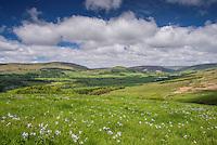 The Hodder Valley, Lancashire.