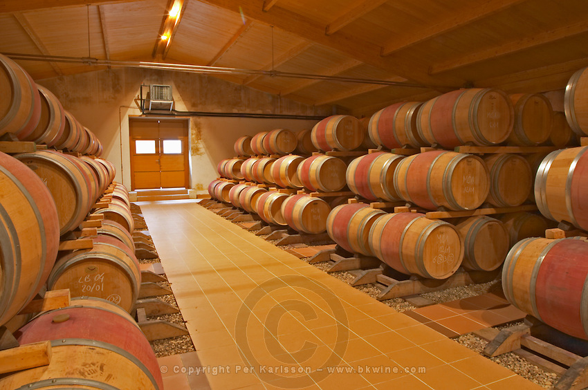 In the wine cellar, rows and stacks of new oak barrels with ageing wine Chateau Bouscaut Cru Classe Cadaujac Graves Pessac Leognan Bordeaux Gironde Aquitaine France