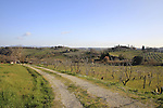 Typical Tuscan scenery during the 2014 Strade Bianche race over the white dusty gravel roads of Tuscany running from San Gimignano to Siena, Italy. 8th March 2014.<br /> Picture: Eoin Clarke www.newsfile.ie