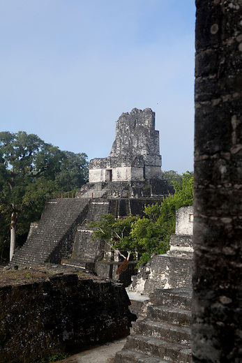 "Archeological site ""Tikal"" insite the Mayan Biosphere Reserve."
