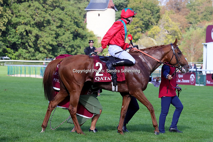 October 06, 2019, Paris (France) - Waldgeist (2) with Pierre-Charles Boudot up after winning the Prix de l'Arc de Triomphe (Gr I) on October 6 in ParisLongchamp. [Copyright (c) Sandra Scherning/Eclipse Sportswire)]
