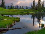 Mount Rainier National Park, WA: Cloud reflections at dawn on Upper Tipsoo Lake