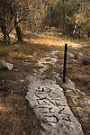 "Israel, Southern Coastal Plain, one of the ""Gezer Boundary"" stones with inscriptions in Hebrew and Greek from the first century B.C.."