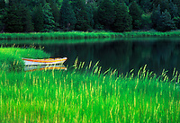 Row boat tied up in marsh grass, Mill Pond, Orleans, Cape Cod
