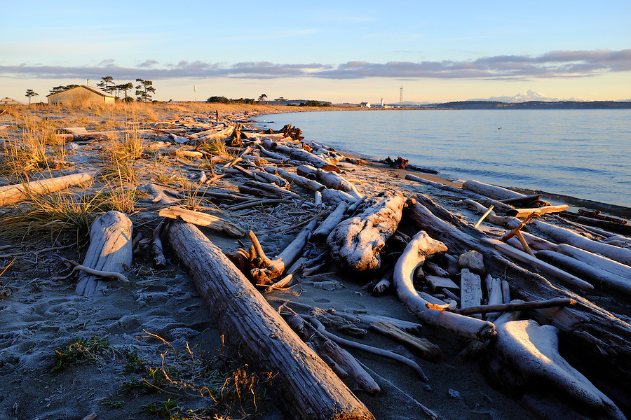 Driftwood on beach at sunrise with Point Wilson Lighthouse and Mount Baker in distance, Fort Worden State Park, Port Townsend, Washington, USA