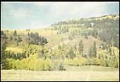 View of fall color near Lobato trestle.<br /> C&amp;TS  near Lobato Trestle, NM