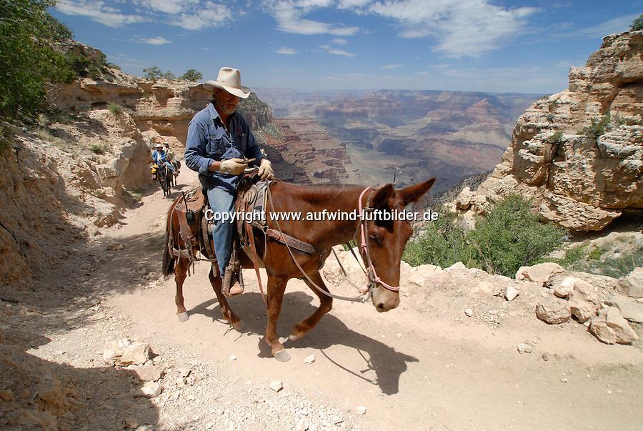 4415 / Grand Canyon: AMERIKA, VEREINIGTE STAATEN VON AMERIKA, ARIZONA,  (AMERICA, UNITED STATES OF AMERICA), 14.05.2006: Mulitour in den Grand Canyon, .Der Grand Canyon (Gewaltige Schlucht) ist eine steile, etwa 450 km lange Schlucht im Norden des US-Bundesstaats Arizona, die ueber Millionen von Jahren vom Fluss Colorado ins Gestein des Colorado Plateau gegraben wurde. Der groesste Teil des Grand Canyon liegt im Grand-Canyon-Nationalpark...Der Canyon zaehlt zu den grossen Naturwundern auf dieser Welt und wird jedes Jahr von rund 5 Millionen Menschen besucht...Der Grand-Canyon-Nationalpark liegt im Nordwesten von Arizona, noerdlich von Williams und Flagstaff und etwa 365 km noerdlich der Hauptstadt Phoenix. .Der Grand Canyon ist etwa 450 km lang (davon liegen 350 km innerhalb des Nationalparks), zwischen 6 und 30 km breit und bis zu 1.800 m tief. Der Name des Canyons stammt vom Colorado River, der frueher in Teilen Grand River genannt wurde (deutsch: Gewaltiger Fluss/Canyon, aber auch Großartiger Fluss/Canyon)..Das Gebiet um das Tal wird in drei Regionen aufgeteilt: den Suedrand (south rim), der die meisten Besucher anzieht, den hoeher gelegenen und kuehleren Nordrand (north rim) und die Innere Schlucht (inner canyon) mit 5 Klimazonen..Flussaufwaerts, im suedlichen Utah liegen andere große Schluchten des Colorado. Der Glen Canyon, der seit 1964 im Stausee des Lake Powell versunken ist, galt landschaftlich als besonders schoen. Weiter im Norden liegt der Canyonlands-Nationalpark. Flussabwaerts, in der Naehe von Las Vegas, liegt der Stausee Lake Mead am Hoover-Staudamm...
