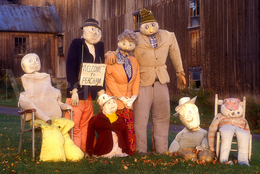 "AJ5718, scarecrow, fall decoration, display, decorations, autumn, A fall decoration of a family of scarecrows in front of a barn with a """"Welcome to Peacham"""" sign in Peacham in Caledonia County in the state of Vermont."
