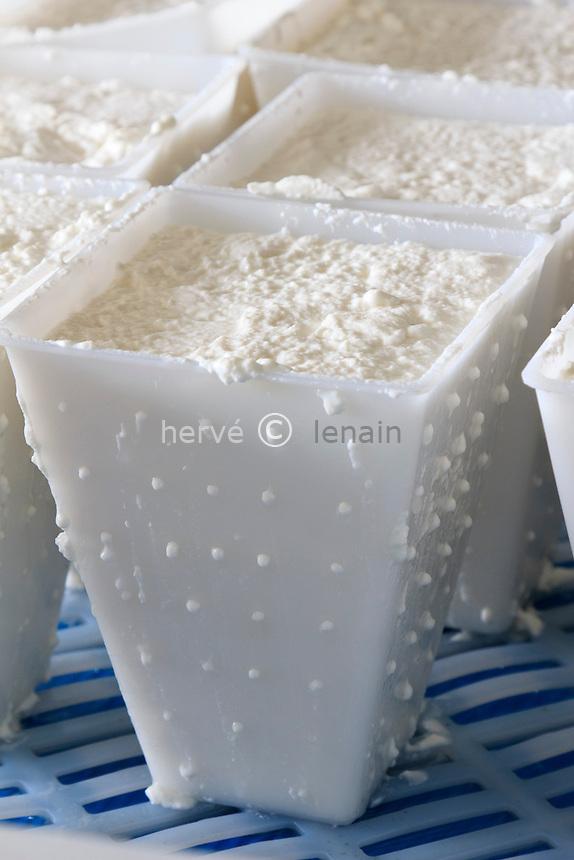 France, Indre (36), Frédille, fromage de chèvre Valençay (AOP) de la ferme du Champ de l'Étang au stade de la faisselle // France, Indre, Fredille, Valençay goat cheese in  faisselles