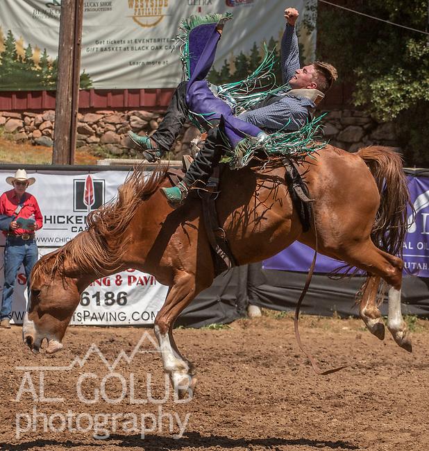 Bareback rider Cache Hill from Fair Oaks, California scores 73.5 at the 62nd annual Mother Lode Round-up on Sunday, May 12, 2019 in Sonora, California.  Photo by Al Golub