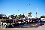 Golf Carts sit parked as their owners compete in a lawn bowling tournament at the Bell Recreation Center in Sun City, Arizona January 9, 2010. There is a lane for golf carts in many roads of Sun City as it is one of the primary modes of transportation.