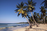 Dominikanische Republik, Playa Las Galeras auf der Samana-Halbinsel