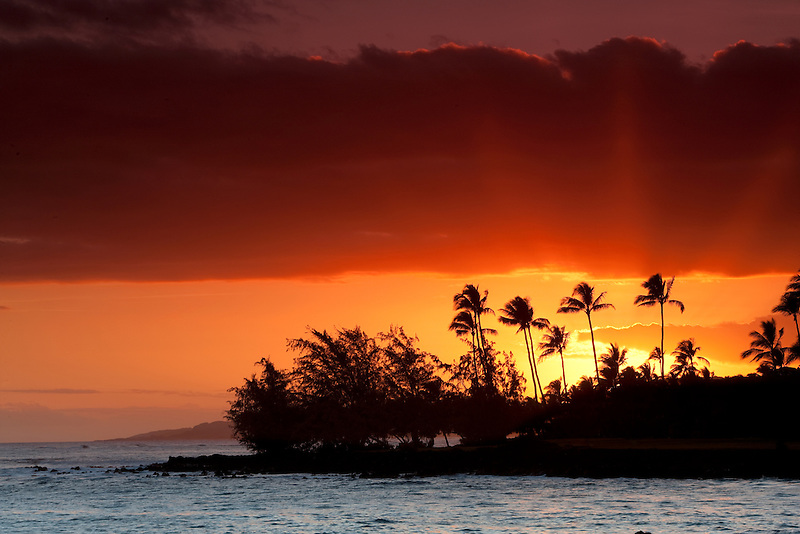 Sunset and palm trees off Poipu coast. Kauai, Hawaii