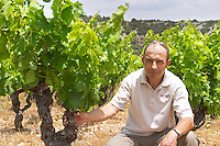 Sylvain Fadat Domaine d'Aupilhac. Montpeyroux. Languedoc. Vines trained in Gobelet pruning. Old, gnarled and twisting vine. Mourvedre grape vine variety. Owner winemaker. France. Europe. Vineyard.