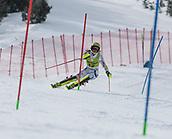 17th March 2018, Àvet Slope, Soldeu, Andorra; FIS Alpine Ski European Cup, Slalom Ladies Finals; 12 HOENRNBLAD Lisa form SWE during the Giant Slalom Final