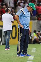 RIO DE JANEIRO, 04.05.2014 - Gilson Kleina, técnico do Palmeiras, durante o jogo contra Flamengo pela terceira rodada do Campeonato Brasileiro disputado neste domingo no Maracanã. (Foto: Néstor J. Beremblum / Brazil Photo Press)