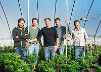 The Stanley Brothers, from left to right, Jon Stanley, Jared Stanley, Joel Stanley, Jesse Stanley, and Jordan Stanley, at their grow house near Colorado Springs, Colorado, Thursday, February 6, 2013. The brothers grow a strain of marijuana low in THC and high in CBD called Charlotte's Web.  <br /> <br /> Photo by Matt Nager