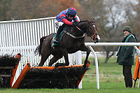 Race winner Amok ridden by Dougie Costello in jumping action during the Murfitts Industries Novices Handicap Hurdle