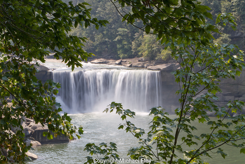 Cumberland Falls through trees, Cumberland Falls State Park in Kentucky.
