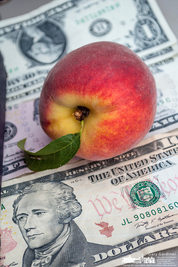 Fresh peaches for sale  at a local farmers market sits on money collected from customers.