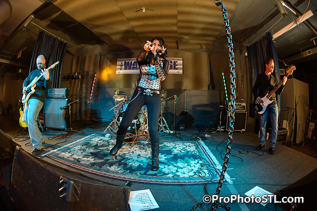 Reigning Heir in concert at The Jefferson Warehouse in St. Louis, MO on Dec 22, 2012.