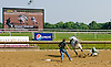 Sergeant Pepper MHF winning at Delaware Park on 6/21/12