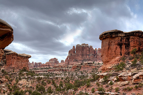 THE STRANGE ROCK FORMATIONS HIGHLIGHT THE CHESLER PARK TRAIL IN THE NEEDLES DISTRICT IN CANYONLANDS NATIONAL PARK,UTAH