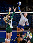 BROOKING, SD - NOVEMBER 13:  Wagner Larson #11 from SDSU winds up for a kill past Hadley Steffen #10 from NDSU during their game Friday afternoon at Frost Arena in Brookings. (Photo by Dave Eggen/Inertia)