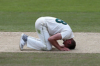 Despair for Jake Ball of Nottinghamshire after a chance goes down off of his bowling during Nottinghamshire CCC vs Essex CCC, Specsavers County Championship Division 1 Cricket at Trent Bridge on 1st July 2019