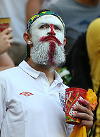 An England fan with painted face and beard looks on