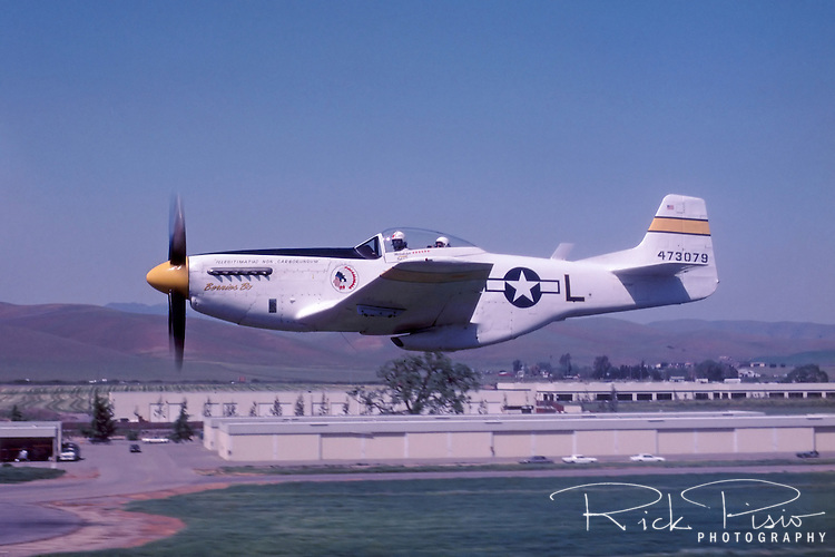 """Legendary pilot Bob Love flies his P-51 Mustang """"Bernie's Bo"""" over the Livermore, California, airport during flight in 1985. Bob was an instructor pilot in the P-38 lightning during the World War II and became an ace in the Korean War flying the F-86 Sabre. Bob also participated regularly at the Reno Air Races each September. Bob passed away in the fall of 1986 and his Mustang since been owned by Russ Francis, Bill Dause, and is now owned by Dream Machines LLC."""