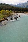 Horseback riders, Pontresina region, Switzerland