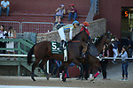 May 2, 2020: Nadal (5) with jockey Joel Rosario aboard before the 2nd division of the Arkansas Derby at Oaklawn Racing Casino Resort in Hot Springs, Arkansas on May 2, 2020. Justin Manning/Eclipse Sportswire/CSM