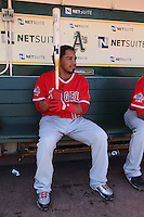 OAKLAND, CA - JUNE 10:  Maicer Izturis #13 of the Los Angeles Angels of Anaheim gets ready in the dugout before the game against the Oakland Athletics at the Oakland-Alameda County Coliseum on June 10, 2010 in Oakland, California. Photo by Brad Mangin