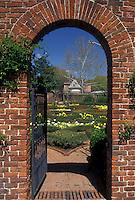 garden, New Bern, NC, North Carolina, Gardens of Tyron Palace at Tyron Palace Historic Sites and Gardens in New Bern.