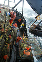 "10/20/03 crab NWS::  Crewman Jeff Madigan unties pots on the143 crab pot stack on the F/V Exito while crewmen below get a pot ready to set in Bristol Bay.  Each pot is 7' X 7' X 34"" and weighs approximately 650 pounds.  This year's ADFG forecast of 14.7 million pounds was the largest projected harvest of Bristol Bay red king crab in 12 years.  It will be several weeks before crabbers know if that harvest was met.  The season lasted 5 days and 2 hours and was plagued with gale force winds of 35 knots or higher almost everyday."