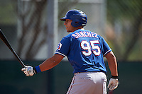 Texas Rangers Tyler Sanchez (95) during an instructional league game against the Arizona Diamondbacks on October 10, 2015 at the Salt River Fields at Talking Stick in Scottsdale, Arizona.  (Mike Janes/Four Seam Images)