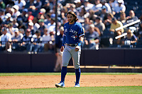 Toronto Blue Jays Bo Bichette (11) during a Spring Training game against the New York Yankees on February 22, 2020 at the George M. Steinbrenner Field in Tampa, Florida.  (Mike Janes/Four Seam Images)