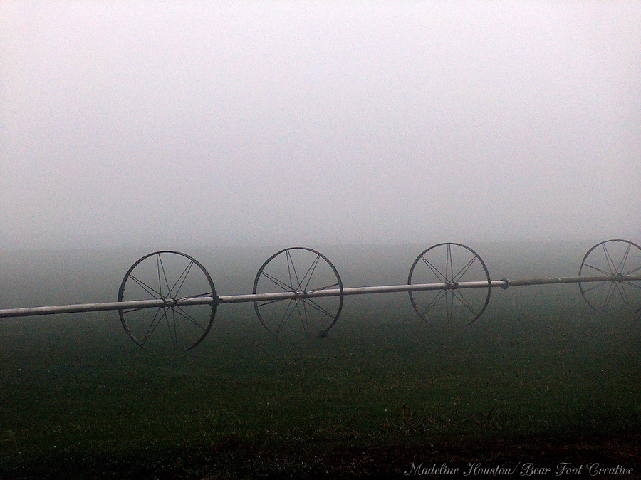 Irrigation units in the fog.