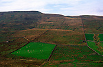 Patch of improved grazing pasture surrounded by moor Yorkshire Dales national park England, Sleddale pasture, near Hawes, Yorkshire, England