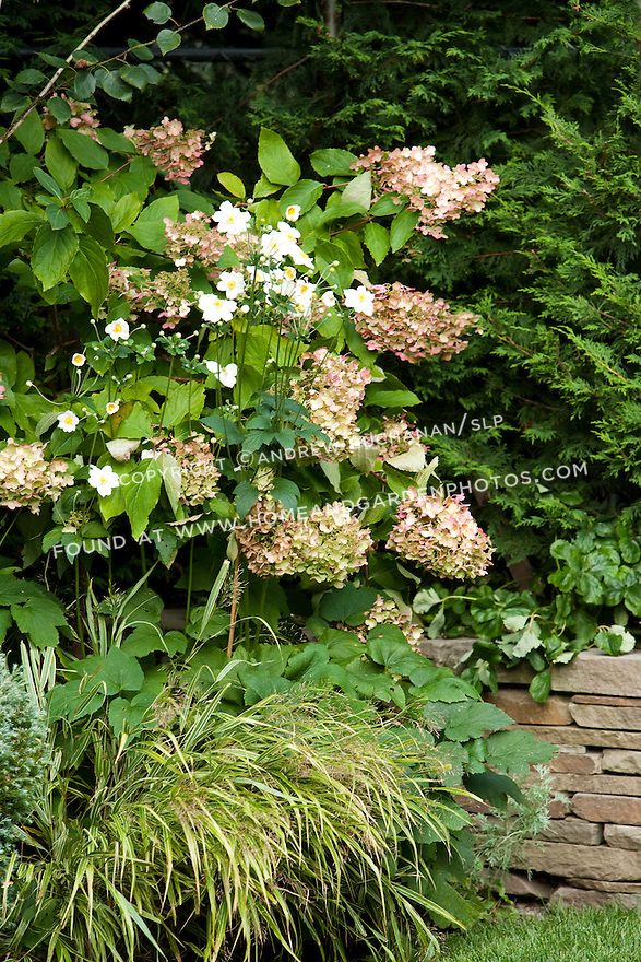 A mixed planting bed of perennials against the stacked stone wall in a Seattle backyard.